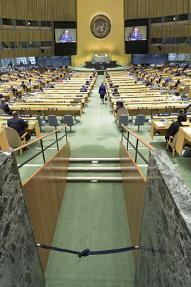 Meeting of States Parties to Convention on Law of Sea