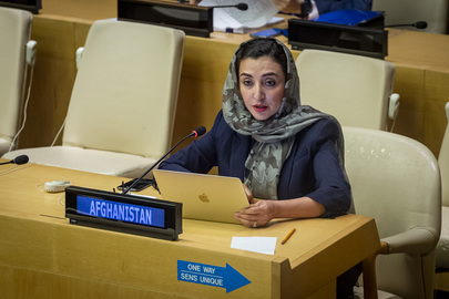 Security Council Meets on Situation in Afghanistan