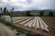 Scenes From Kosovo 7.9929934