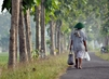 """United Nations Forum on Forests Photo Competition: """"Walking Alone"""" 14.571264"""