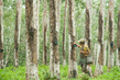 """United Nations Forum on Forests Photo Competition: """"Rubber Farmers"""" 14.571264"""
