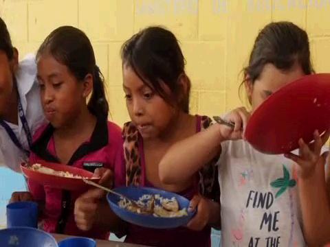 FAO  2020 FOOD SECURITY REPORT