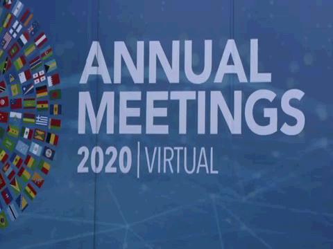IMF  BROLL VIRTUAL ANNUAL MEETINGS