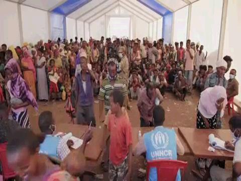 UNHCR / ETHIOPIANS FLEEING TIGRAY