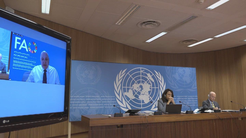 GENEVA  AFGHANISTAN FAO OCHA
