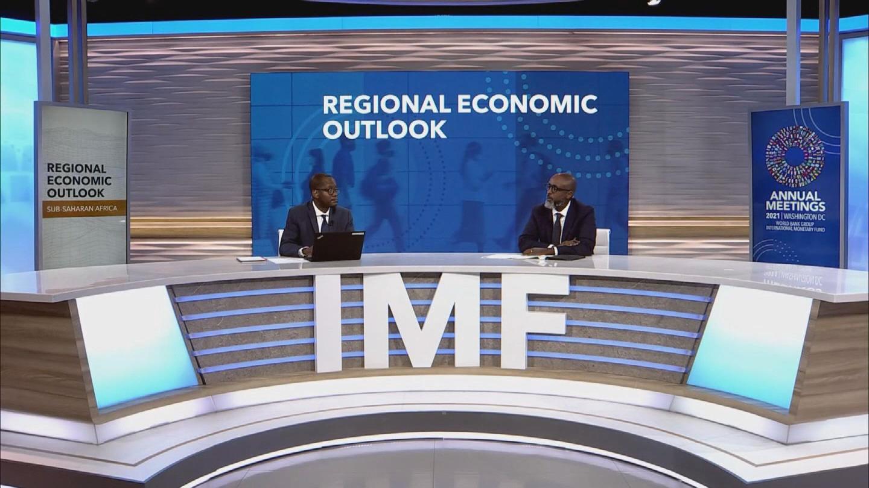 IMF  AFRICA ECONOMIC OUTLOOK