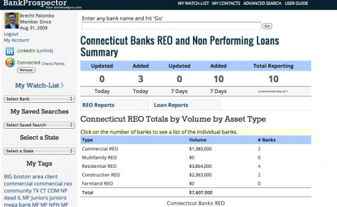 California Banks REO and Non Performing Loans Summary Screenshot