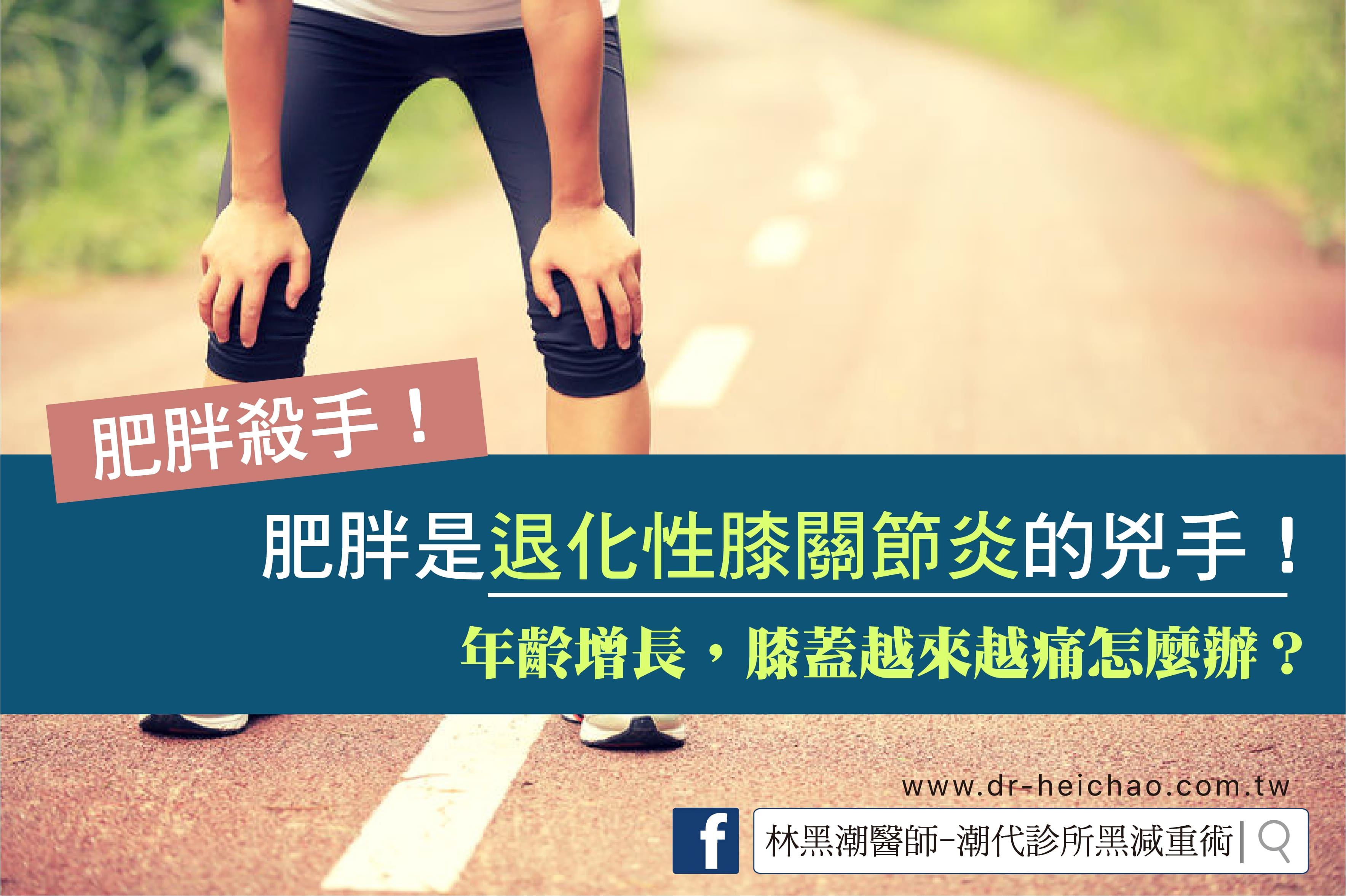 肥胖與退化性膝關節炎/文:夏明輝醫師