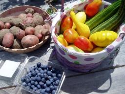 garden goods 6 10 14.jpg