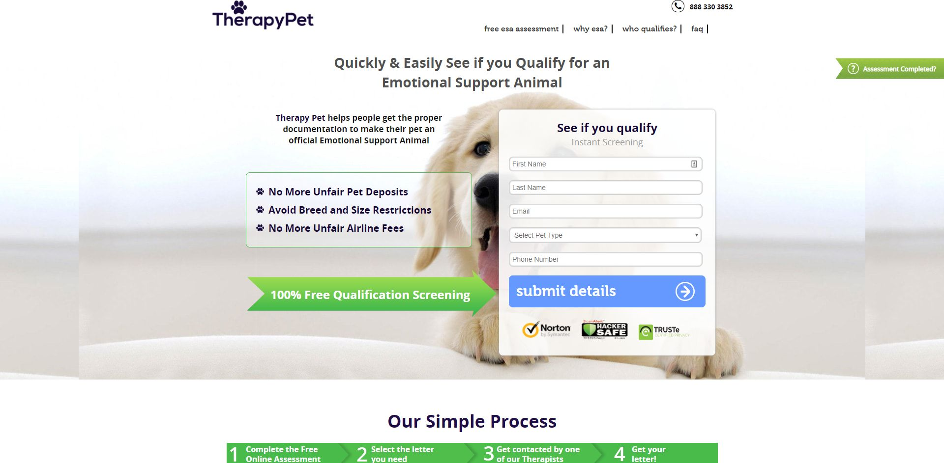 TherapyPet.org - XSS Mitigation