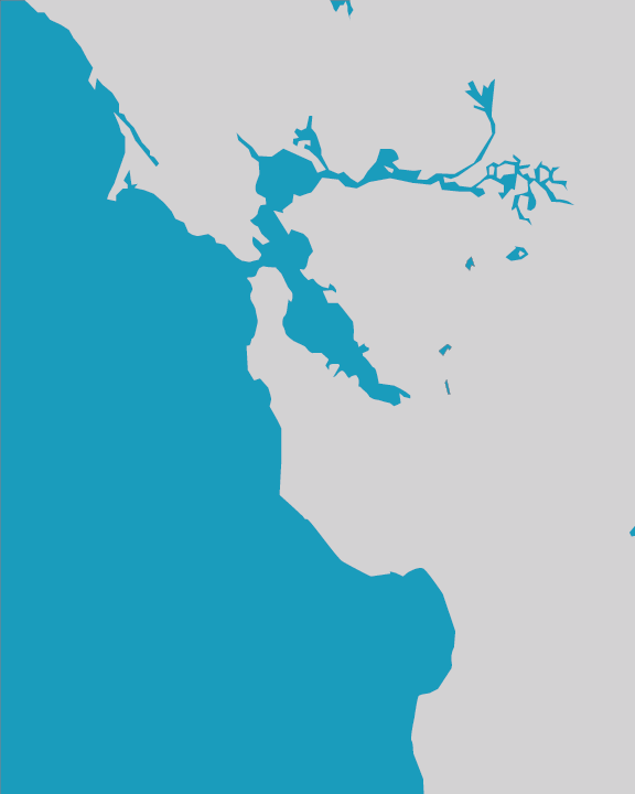 Delanie ricketts maps the initial outline of the bay created in illustrator gumiabroncs Choice Image
