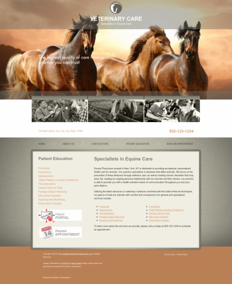 Equine Website Preview #2