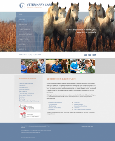 Equine Website Preview #1