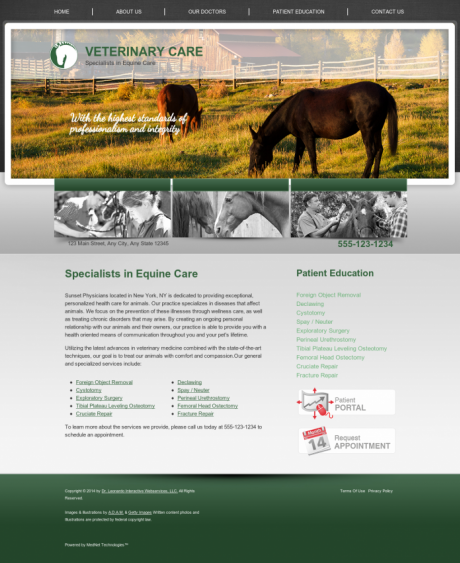 Equine Website Preview #4