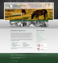 Equine Website Thumbnail #4