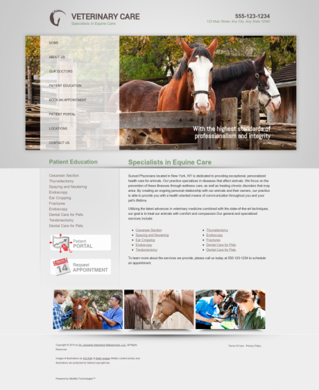 Equine Website Preview #11