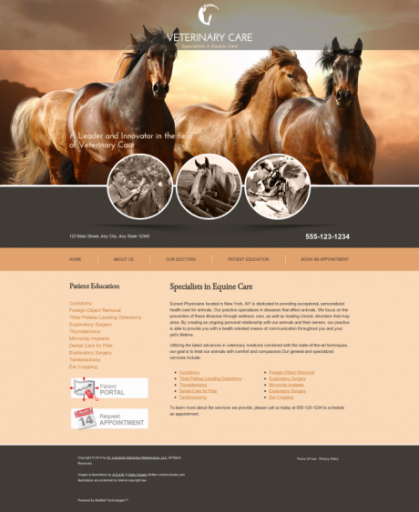Equine Website Preview #8