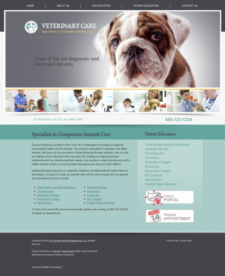 Veterinary Website Preview #7