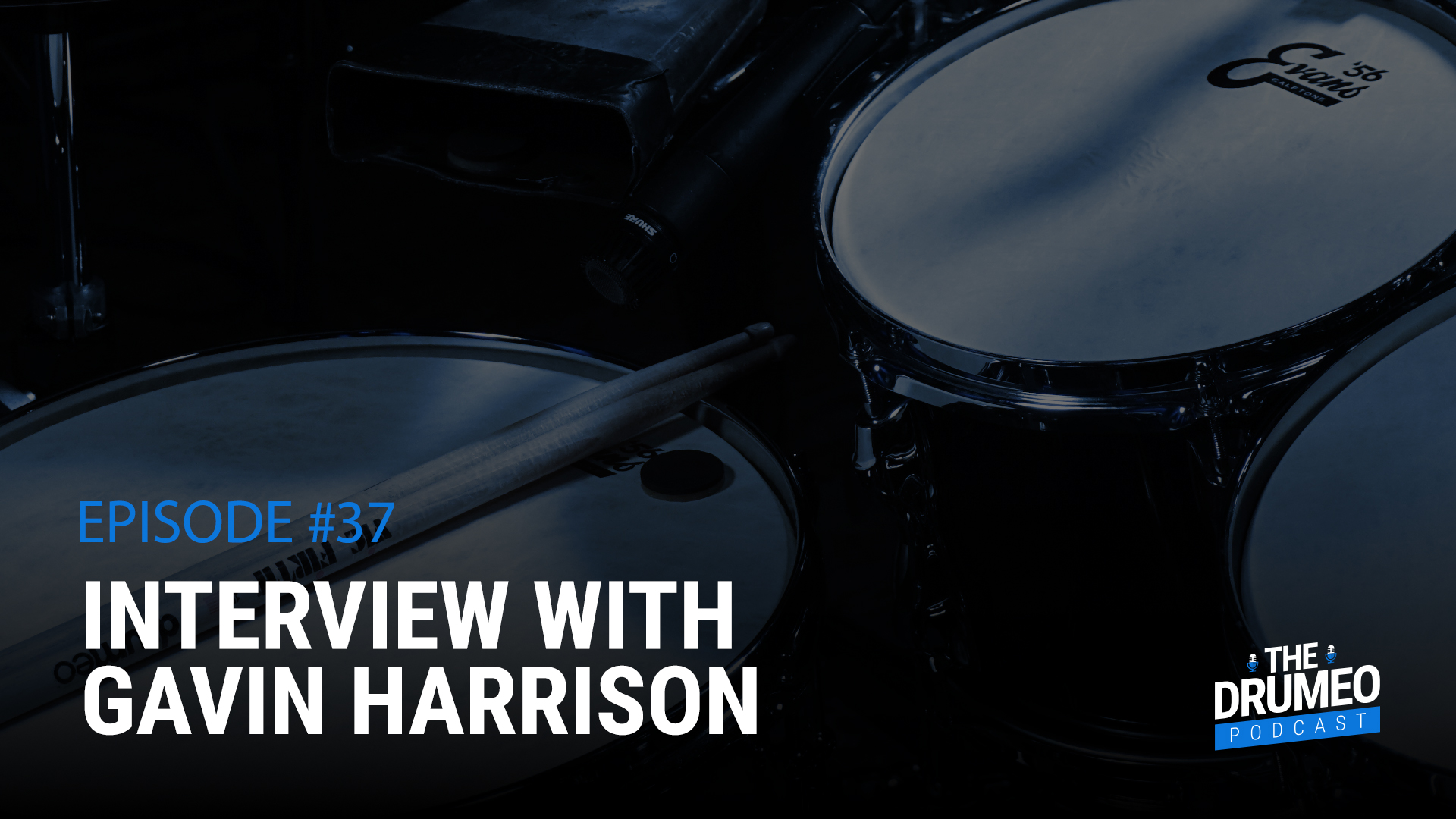 Gavin Harrison, One Of King Crimsons Drummer And Former Porcupine
