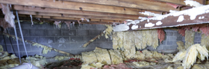 mold and rot in a Saginaw crawl space
