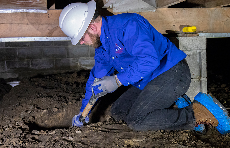 crawl space specialist checking