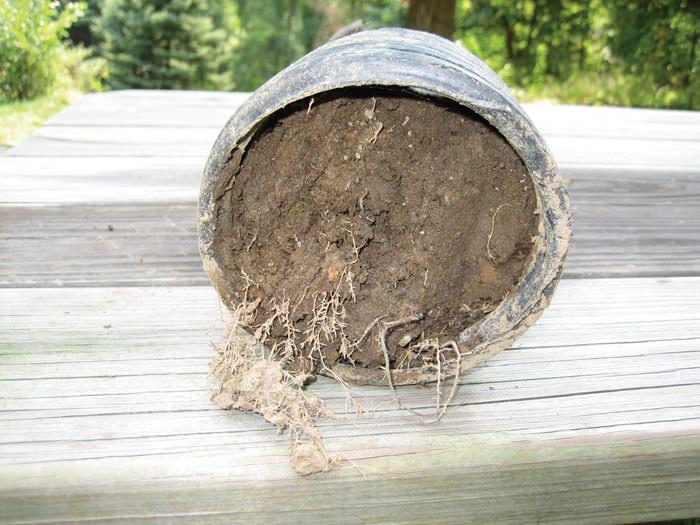 clogged french drain found in Cheboygan, Petoskey, Cadillac, Alpena, Michigan