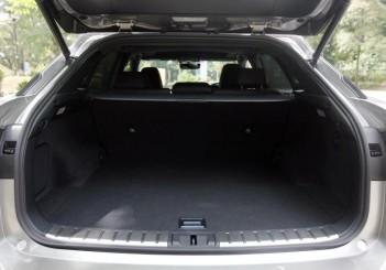 Lexus RX 200t F SPORT - 06