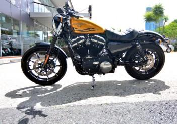 Harley-Davidson Iron 883 - 02