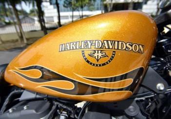 Harley-Davidson Iron 883 - 08