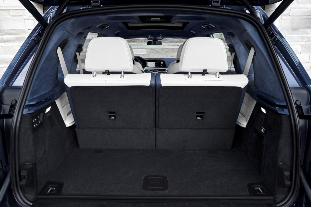 2019 BMW X7 (4)