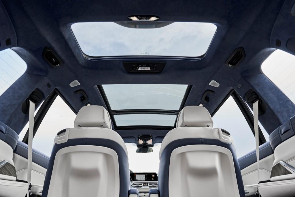 2019 BMW X7 (8)