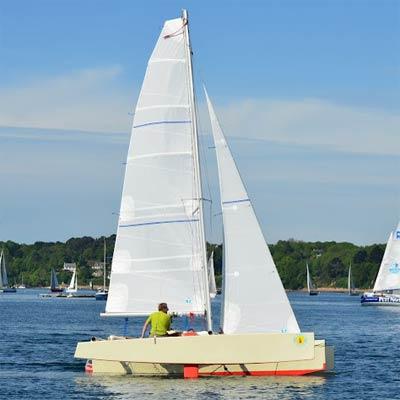 Sardine Run Plans