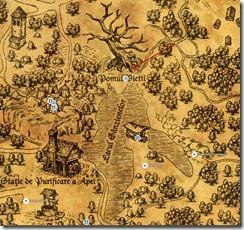 shadowforestmap