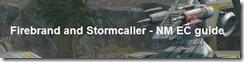 firebrand_stormcaller_banner