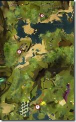 gw2-magic-snow-caledon-forest--map