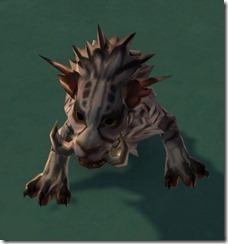 swtor-tundra-nekarr-cat-2