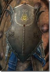 gw2-krytan-shield-2