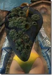 gw2-orrian-shield-2