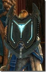 gw2-pact-shield-2