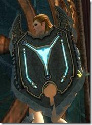 gw2-pact-shield