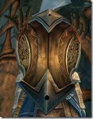 gw2-shiverpeak-shield-2