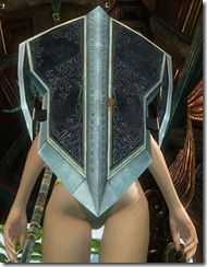 gw2-vigil's-honor-shield-2