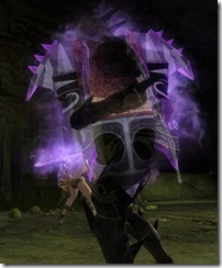 gw2-wall-of-the-mists-shield-2