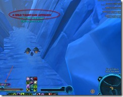 swtor-pets-taunlet-guide-4
