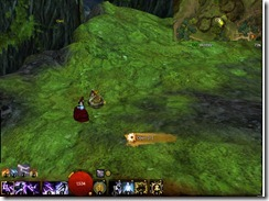 gw2-a-waddle-to-remember-achievement-guide-caledon-forest