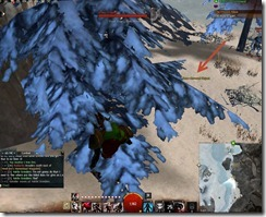 gw2-lost-and-found-guide-refugee's-goblet-19
