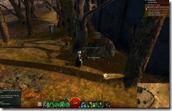 gw2-lost-and-found-guide-refugee's-wooden-soldier-18