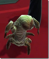 swtor-killik-assassin-larva-5