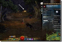 gw2-altar-brook-lair-guild-trek-2