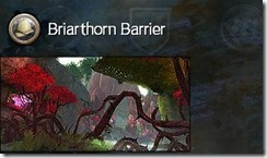 gw2-briarthorn-barrier-guild-trek-2